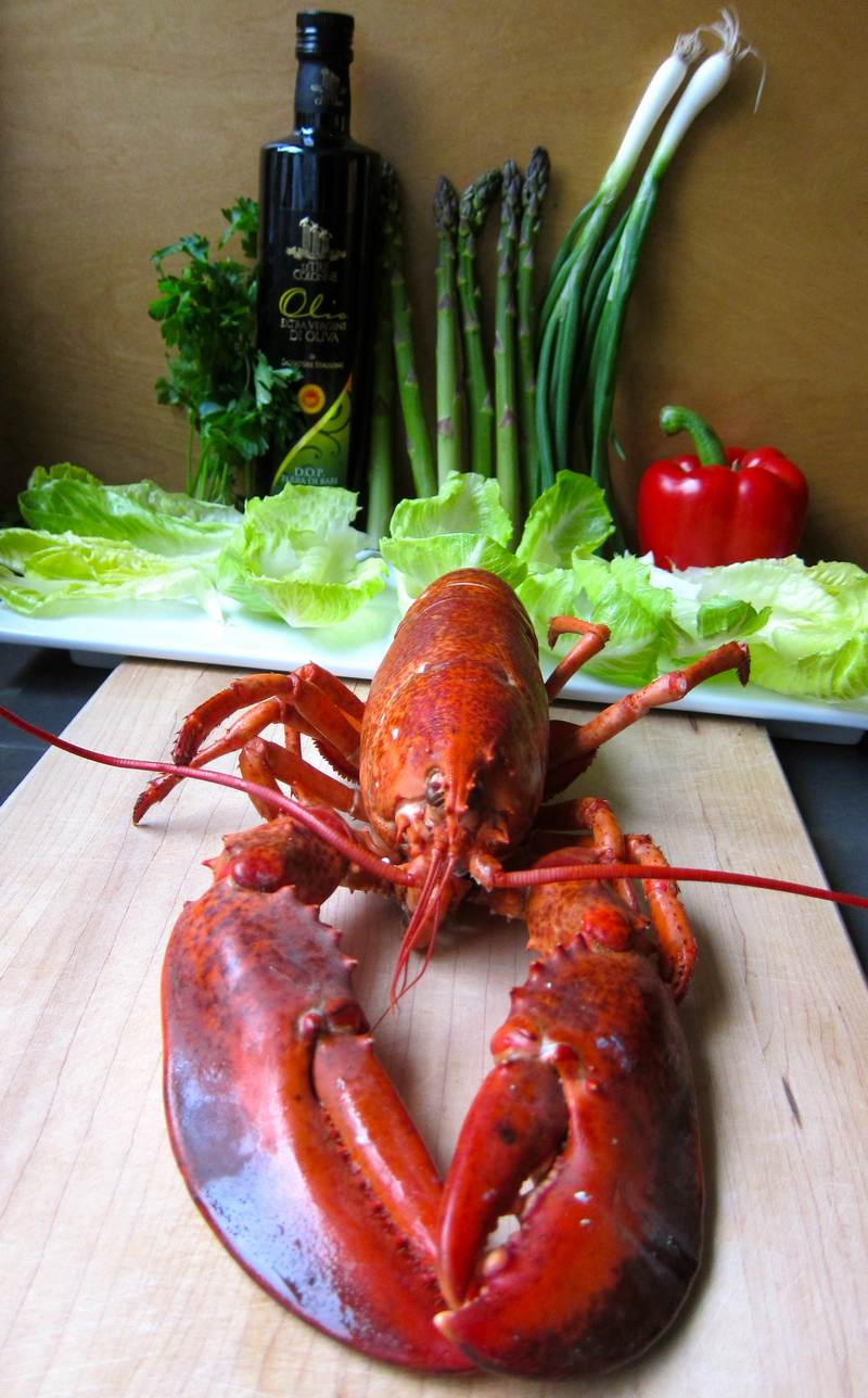 Lobster Salad to Inspire Chihuly - jittery cook